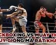 Kickboxing và Muay Thái: Nhìn tương đồng nhưng lại rất khác