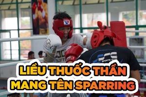 Ý nghĩa và lợi ích của việc sparring trong võ thuật đối kháng